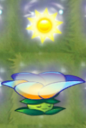 Moonflower 25 sun