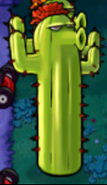 Cactus reach