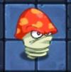 Нитрированный гриб