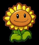 HD Sunflower