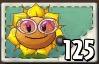 SunflowerSingerSeedPacket