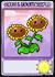 Sunflowerseedpacketpc