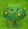 FileOrange Tree