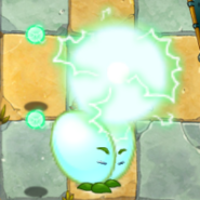 Beanstalk Using PF