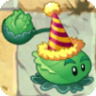 Cabbage-pultBirthdayzCostume