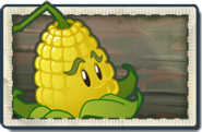 Kernel-pult New Pirate Seas Seed Packet