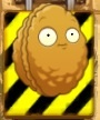 SoS Wall-nut