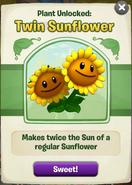 Twin Sunflower got