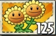 Twin Sunflower Boosted
