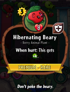 Hibernating Beary Description