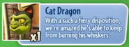 CatDragonDescription