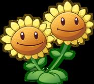 Sunflower-plants-vs-zombies-2-699468