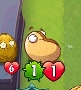 GiganticSmall-Nut