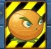 SoS Citron