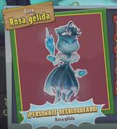 Rosa Gelida Desbloq