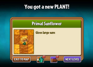 Getting Primal Sunflower