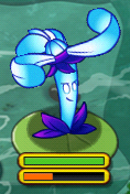Nightshade on Lily Pad