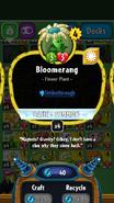 Bloomerang stats