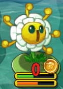 Golden Chrysanthemum on Lily Pad