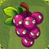 Grapeshot2C