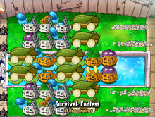 Pumpkins with Ladders