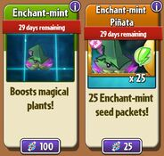 Enchant-mint and Enchant-mint Seed Packets in Store