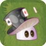 Magic-shroom2