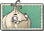 Garlic Seed Packet
