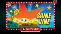 Shine Vine Video Ad