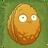 Wall-nut2