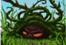 Spikyspikeweed