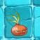 Cebolla aturdidora1