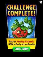KetchupMechnicComplete