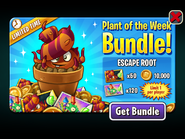 Plant of the Week Bundle - Escape Root