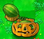 Melon pult pumpkin