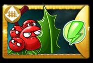 Hollybarrier6.7.1