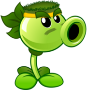 CoachSDot Profile Pic Commando Pea