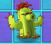 CactusNMT2