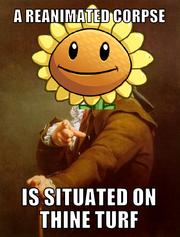 Sunflowersong