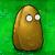 Tall-nut1