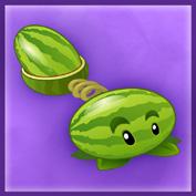 Artwork Melonpulta