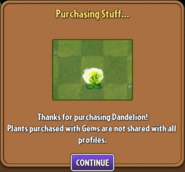 Dandelion Purchased