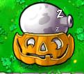 9PumpkinImitSleepFume