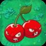 Cherry BombO