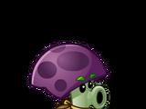Spray Mushroom line
