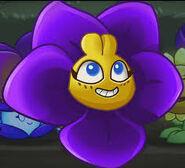 A happy violeta