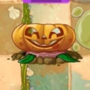 Olive Pit in Pumpkin