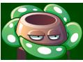 Rafflesia 1