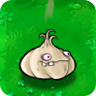 File:Garlic1.png