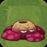 RafflesiaASOld